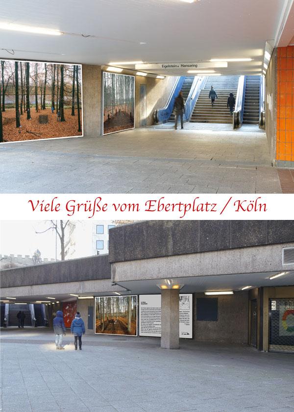 Ivo Weber Waldfegen auf den Plakatwänden am Ebertplatz